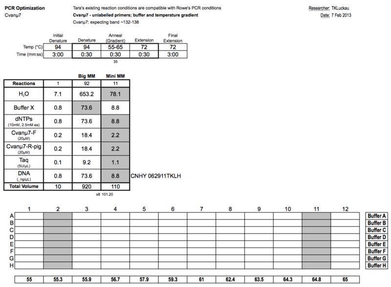 File:20130207 PCRb.png