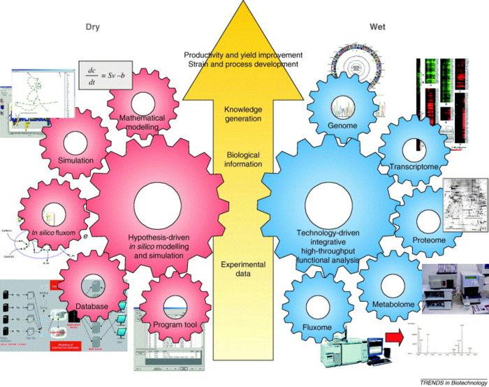 Sysbiotech.jpg