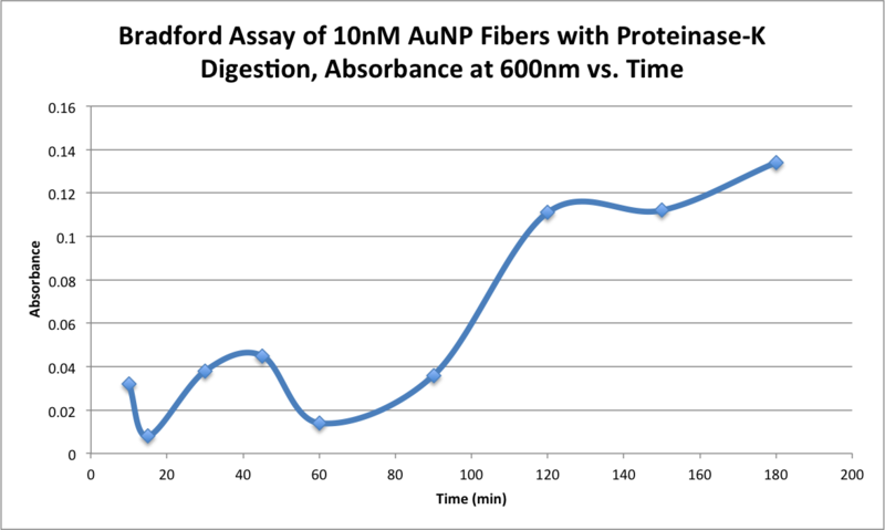 Image:AMS 10272015 Bradford Assay of 10nM AuNP Fibers with Proteinase-K Digestion, Absorbance at 600nm vs. Time .png