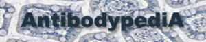 Modified Antibodypedia logo.png