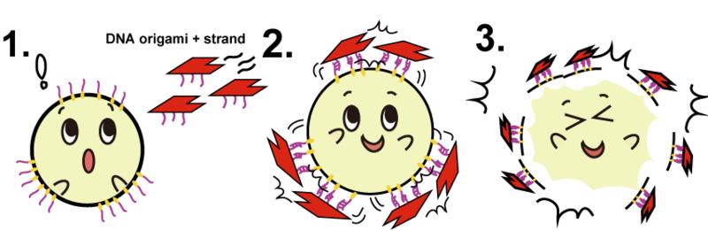 File:リポちゃん8.png