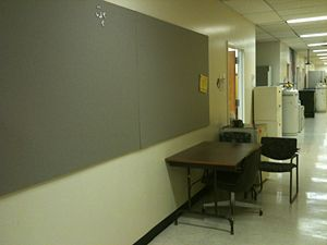 RenhaoLiLab Hallway empty.JPG