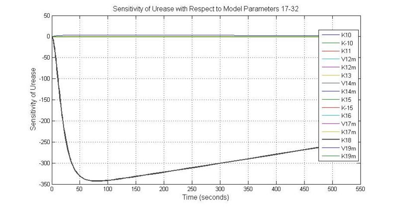 File:Sensitivity of Urease with Respect to Model Parameters 17-32.jpg