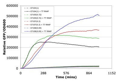 Time courses of GFP accumulation per cell using promoters of different strengths