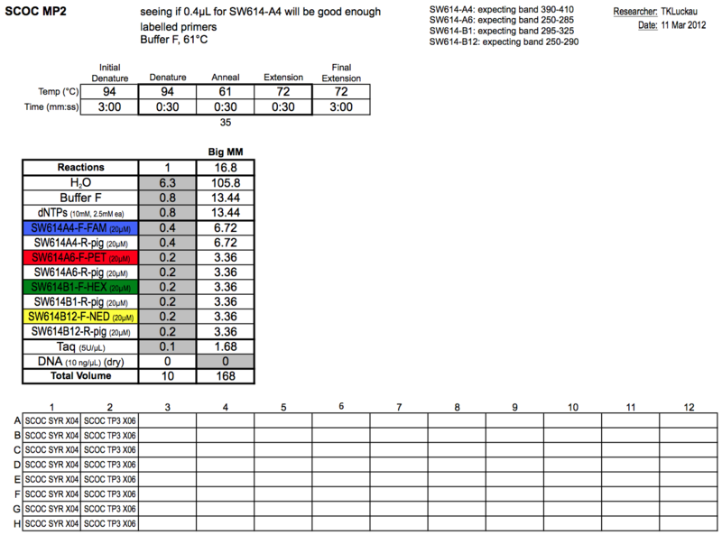 20130311 PCR.png