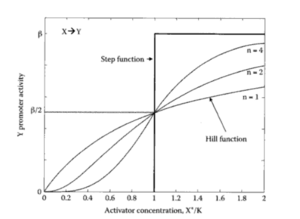 Hill Function (Activator)