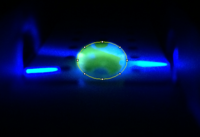 Photo of Positive Sample droplet with circle around droplet