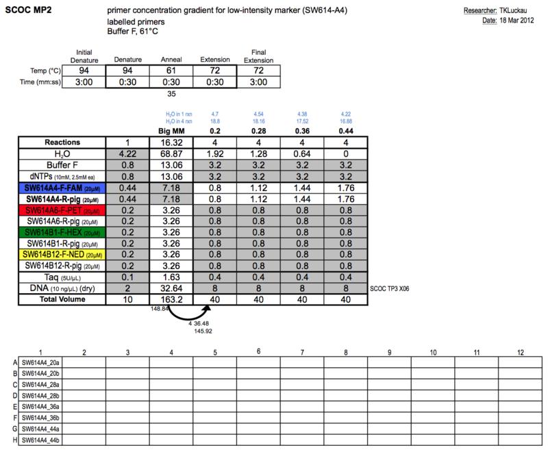 20130318 PCRa.png