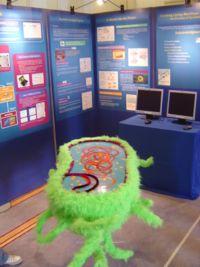 RSSE2007 ImperialCollege Exhibit 4.JPG