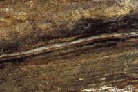 The iridium-rich clay layer at the boundary between Cretaceous and Tertiary rocks. Courtesy of Canadian Museum of Nature, Ottawa)