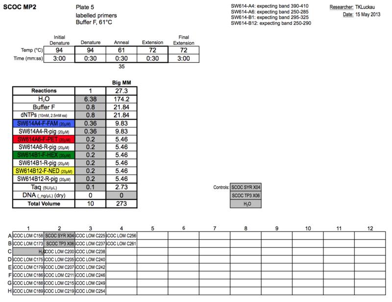 20130515 PCR.png