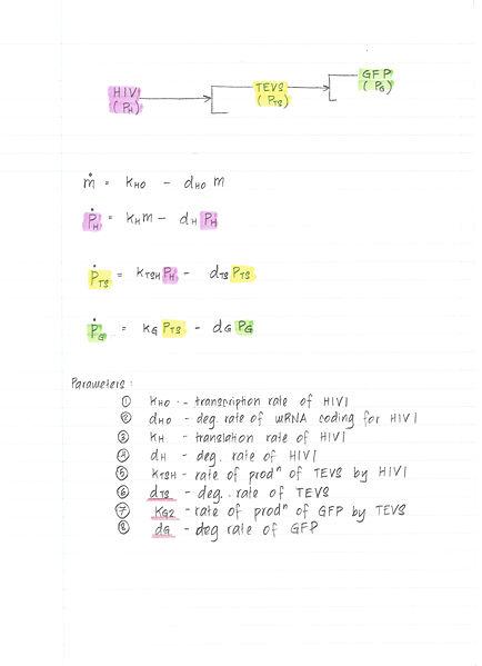 File:Model output 011.jpg