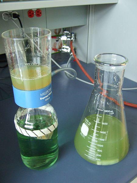 File:PTM1 filtration.JPG