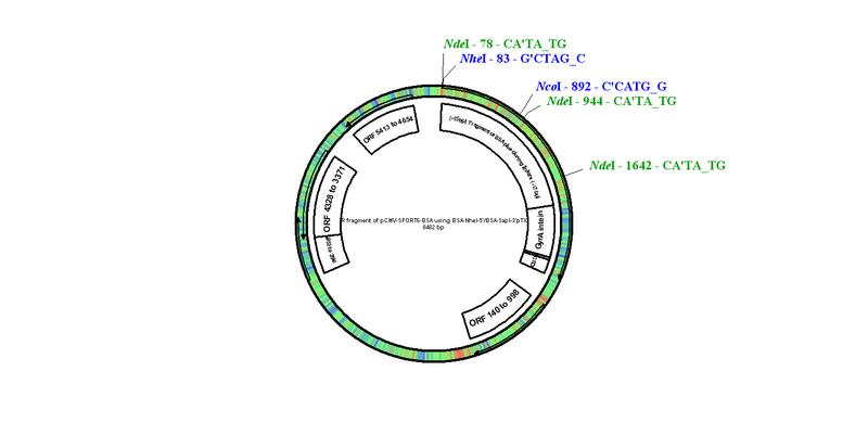 File:PTXB1-BSA.bmp