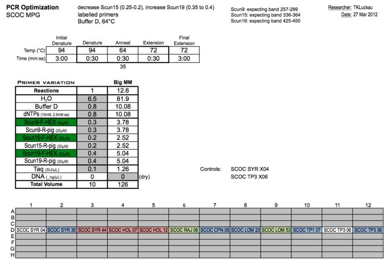 20120327 PCRb.png