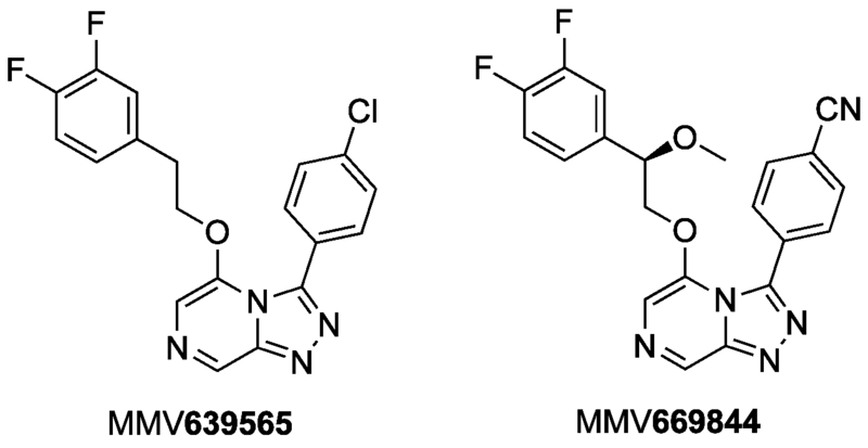 File:MMV669844 and MMV639565.png