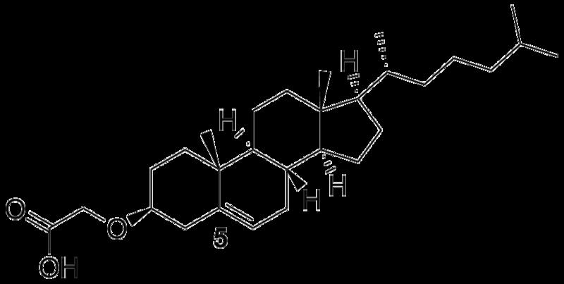 File:Biomod Aarhus Chem Chol5.png