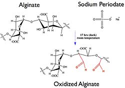 Alginate oxidation.jpg