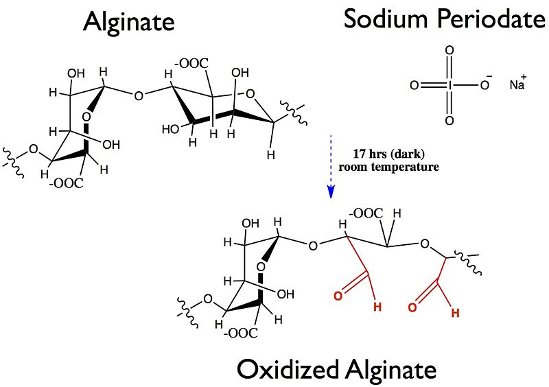 File:Alginate oxidation.jpg