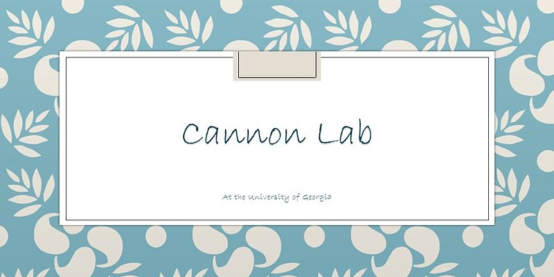 Image:Cannon Lab2.jpg