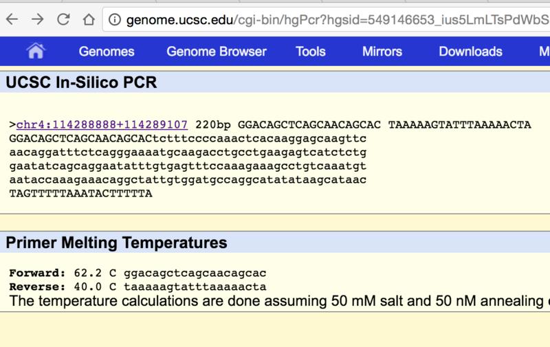 File:PCR Screenshot 2.png