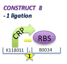 File:II09 ConstM2aa.jpg