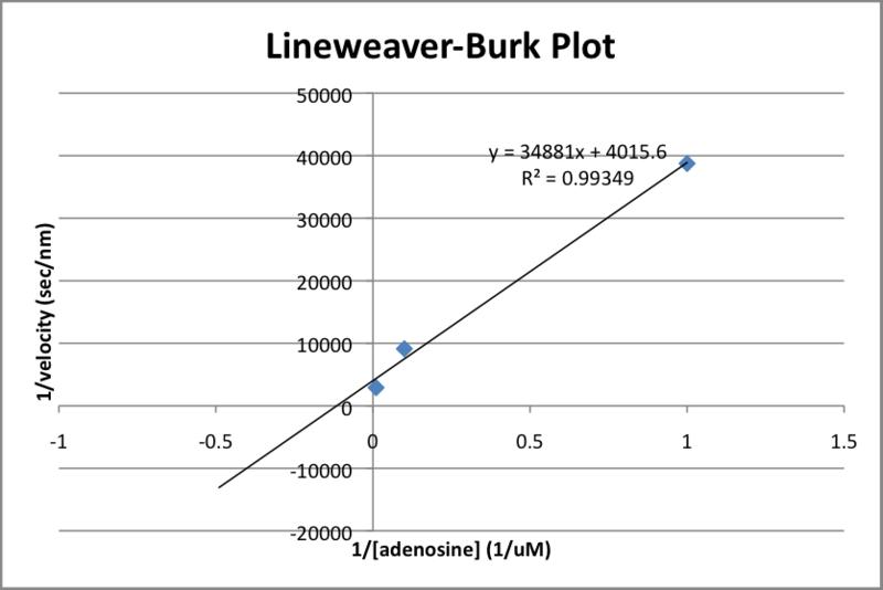 File:Lineweaver-Burk Plot 2013-02-05.png