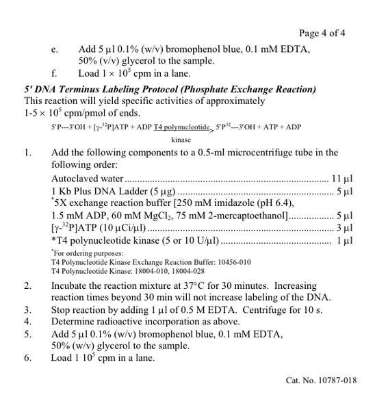 File:DNA-Ladder-5.png