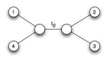 L8 branch.jpg