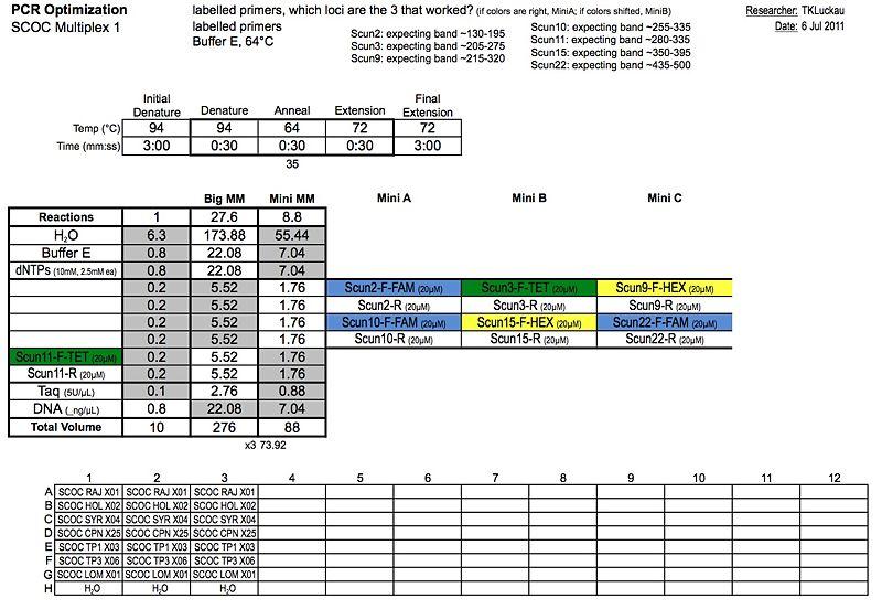 20110706 PCR.jpg