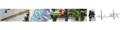 Thumbnail for version as of 08:58, 19 May 2010