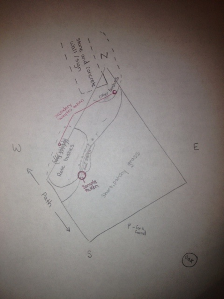 File:Transect-Erin.png