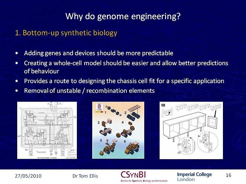 File:GenomeEngineering.jpg