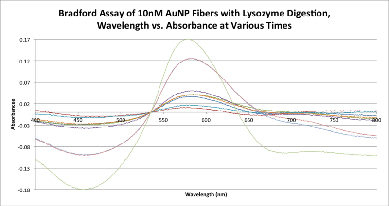 File:Bradford Assay of 10nM AuNP Fibers with Lysozyme Digestion, Wavelength vs. Absorbance at Various Times .png
