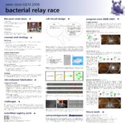 Bacterial Relay Race