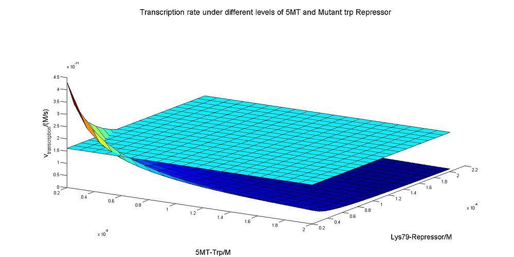 Transcripiton rate.jpg