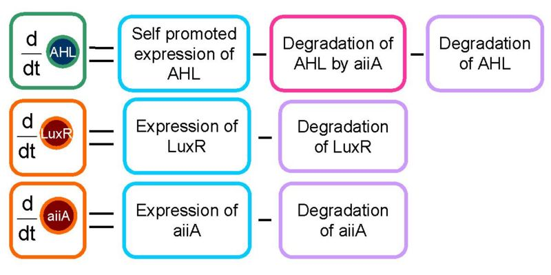 File:Block diagram.jpg