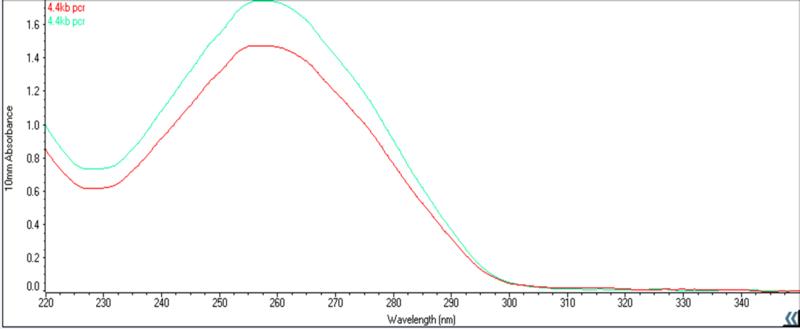 File:Nanodrop 4.4kb PCR reaction results.png