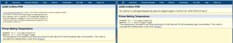 The result of the genome search through the available databse (left showing a match, right showing no result)