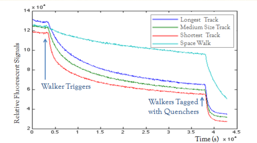 Figure 2. Unnormalized SPEX results for different lengths of tracks and space walking. Excess of walker triggers were added at 4000s to activate all the walkers. Excess of walkers tagged with quenchers were added at the end to terminate all the reactions.