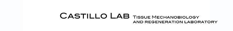 Castillo Lab Logo 3.jpg