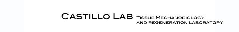 File:Castillo Lab Logo 3.jpg