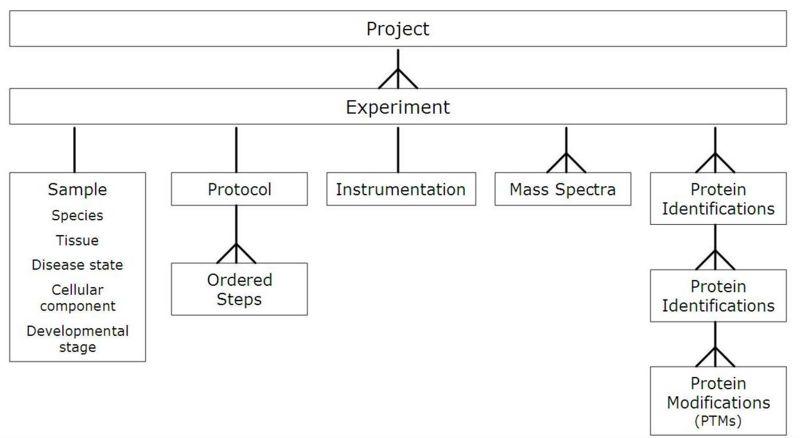 File:DataModel.JPG