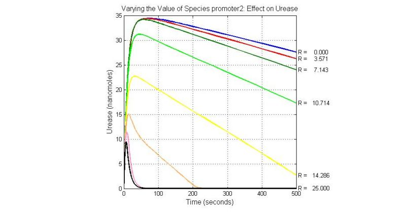 File:Varying the Value of Species promoter2 Effect on Urease.jpg