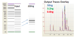 Constructing Illumina libraries from 50bp ladder