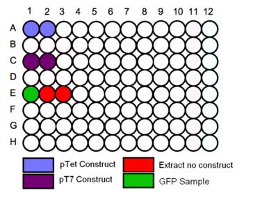 96 Plate Schematic