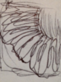 Thumbnail for version as of 16:15, 7 February 2015