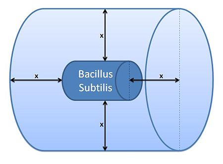 Control volume (Volume of B.sub to be excluded. x indicates the distance travelled by AIPs from the surface in time t)