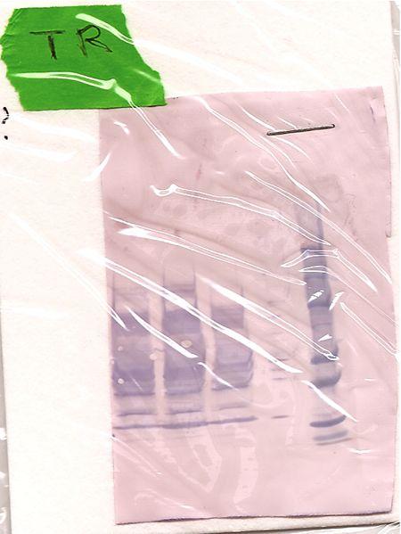 File:20.109(F09) TR Western Green?.jpg