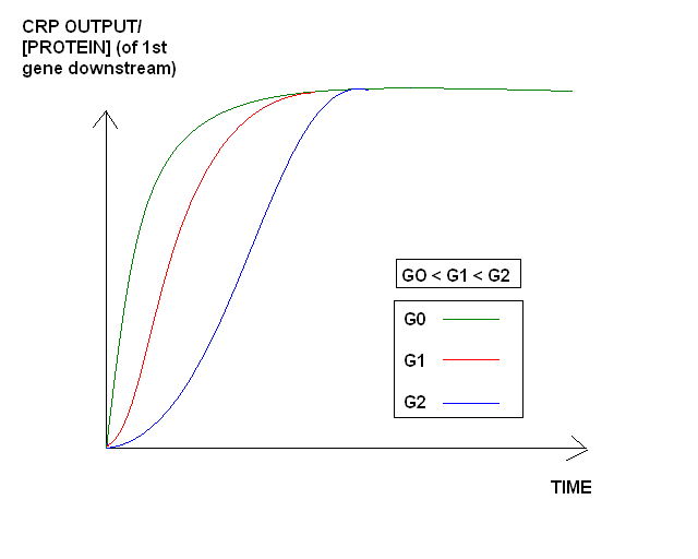 II09 glucosecncs.jpg